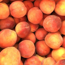 Cherry Creek Orchards