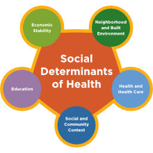 gfw_social_determinants_of_health_220x220.jpg